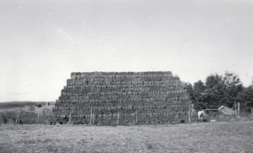 stacked hay final
