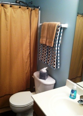 We kept the shower curtain and invested in new towels. A girl on a budget doesn't get both.
