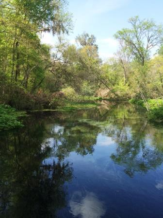 Picture-perfect tranquility at Ichetucknee Springs State Park in central Florida.