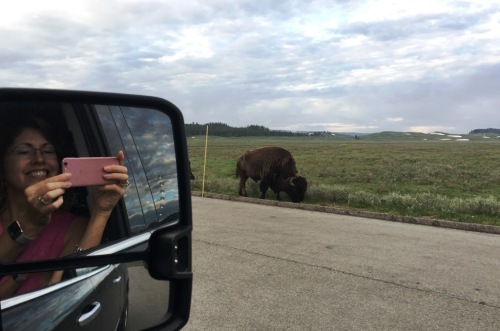 buffalo close