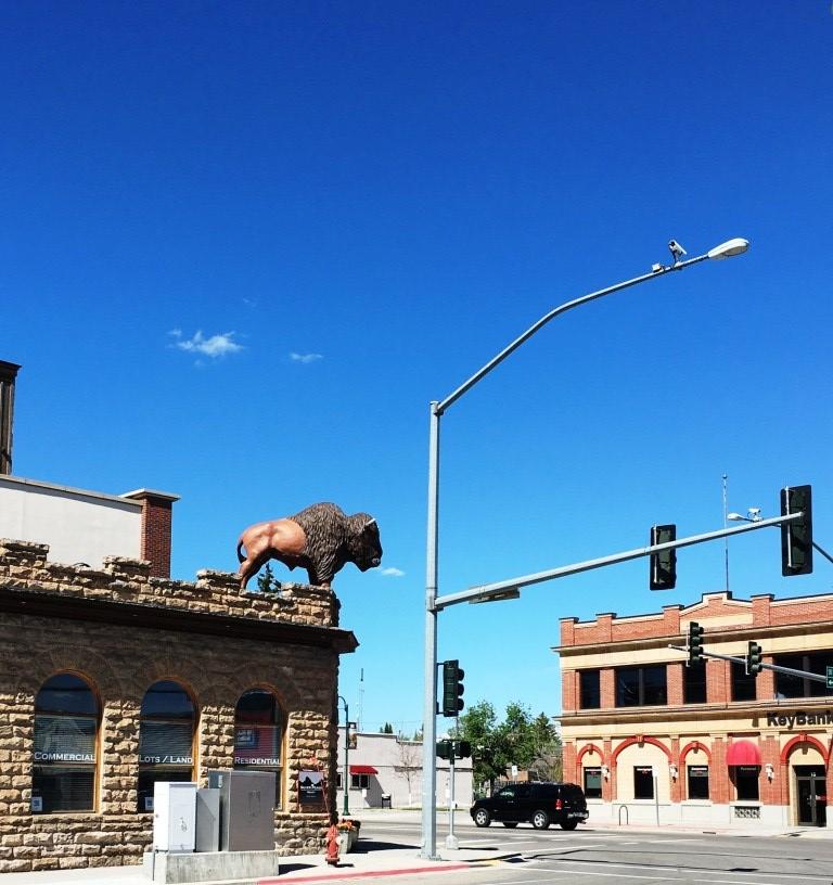 buffalo june 4