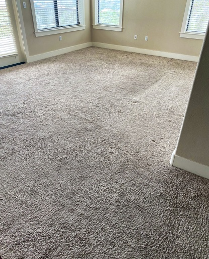 condo carpet before