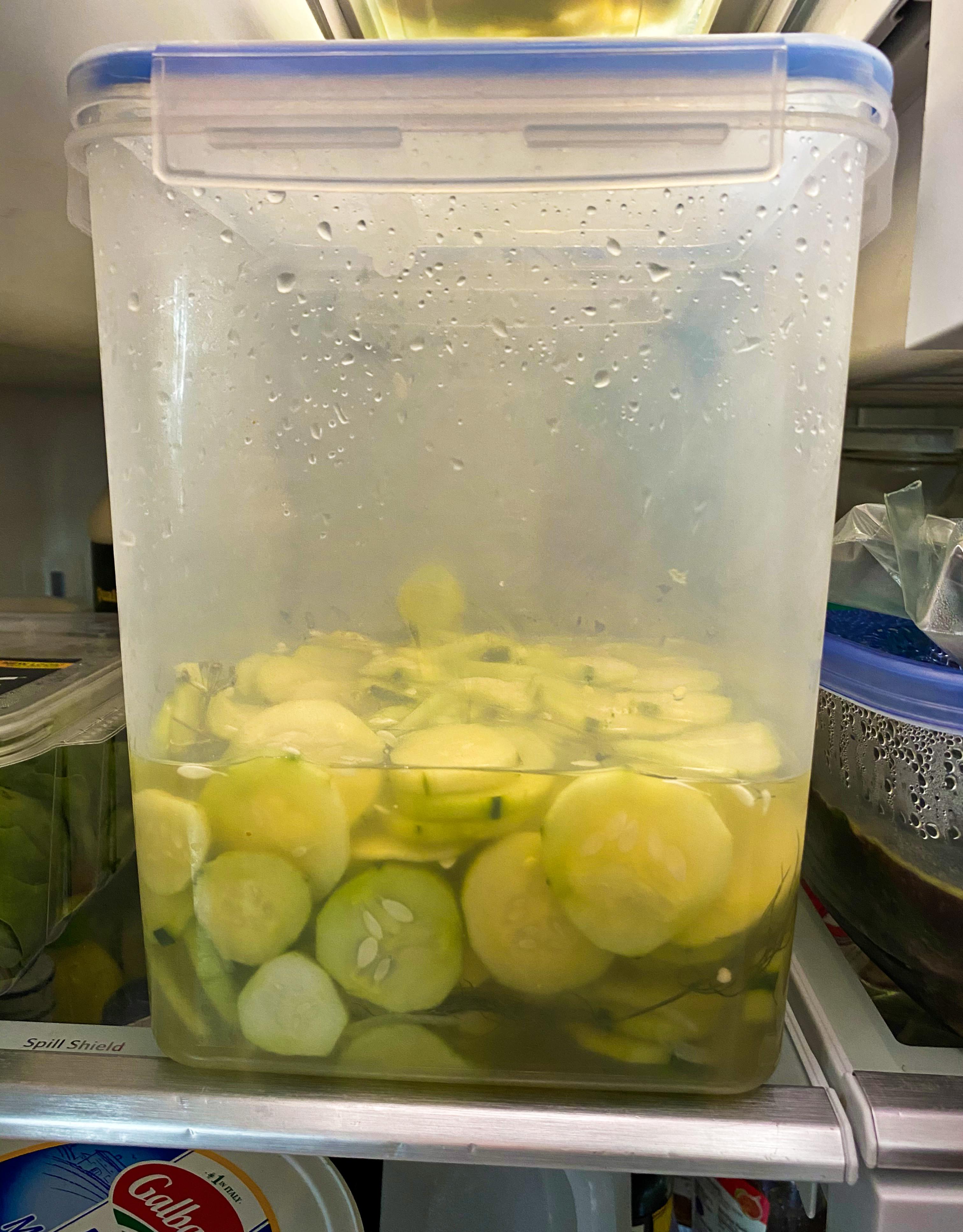 2020.07.23 cucumber salad